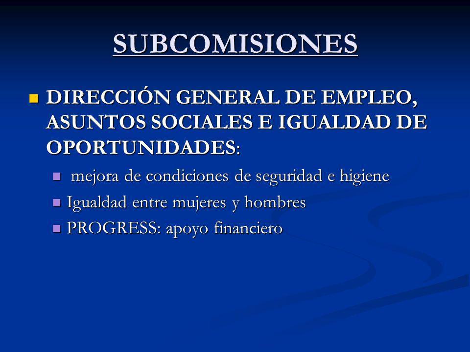 SUBCOMISIONES DIRECCIÓN GENERAL DE EMPLEO, ASUNTOS SOCIALES E IGUALDAD DE OPORTUNIDADES: mejora de condiciones de seguridad e higiene.