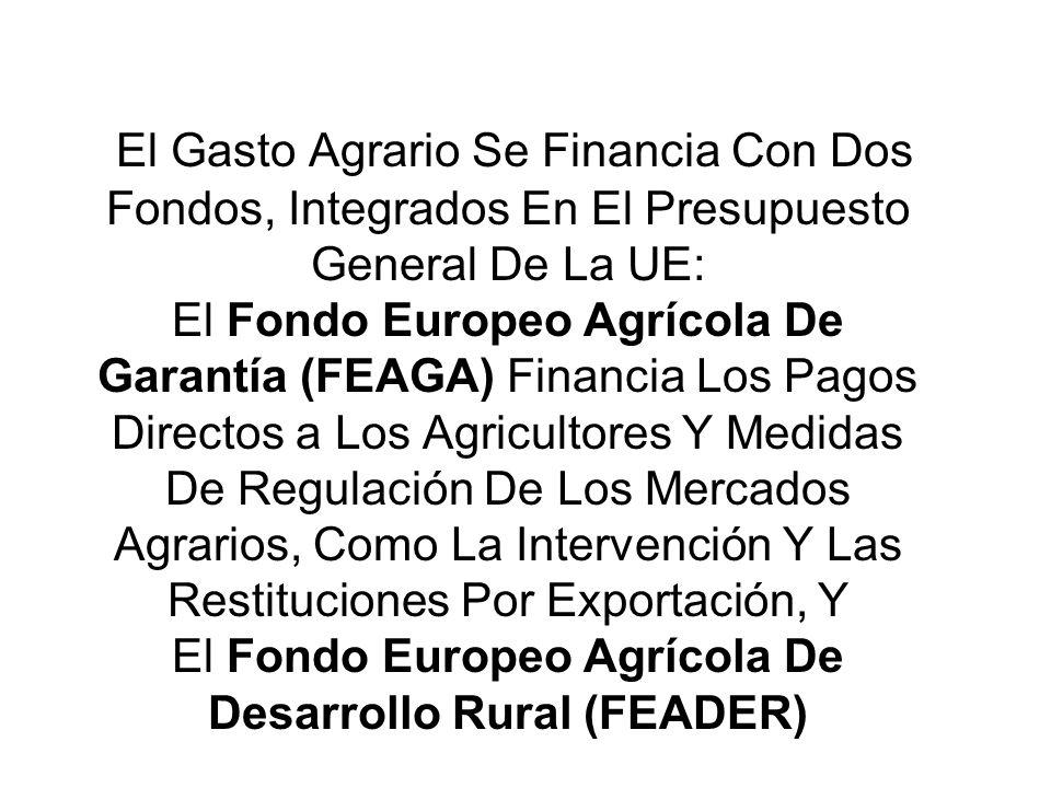 El Gasto Agrario Se Financia Con Dos Fondos, Integrados En El Presupuesto General De La UE: El Fondo Europeo Agrícola De Garantía (FEAGA) Financia Los Pagos Directos a Los Agricultores Y Medidas De Regulación De Los Mercados Agrarios, Como La Intervención Y Las Restituciones Por Exportación, Y El Fondo Europeo Agrícola De Desarrollo Rural (FEADER)