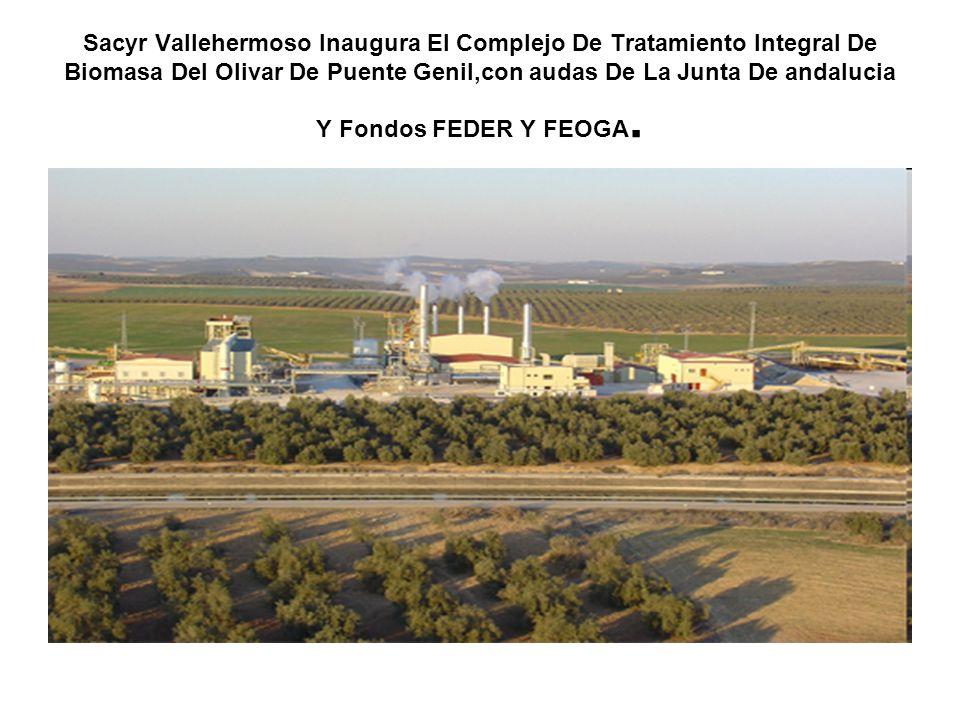 Sacyr Vallehermoso Inaugura El Complejo De Tratamiento Integral De Biomasa Del Olivar De Puente Genil,con audas De La Junta De andalucia Y Fondos FEDER Y FEOGA.