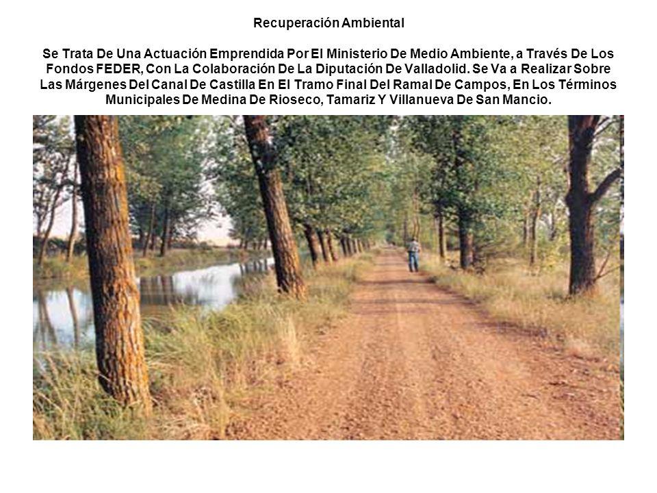 Recuperación Ambiental Se Trata De Una Actuación Emprendida Por El Ministerio De Medio Ambiente, a Través De Los Fondos FEDER, Con La Colaboración De La Diputación De Valladolid.