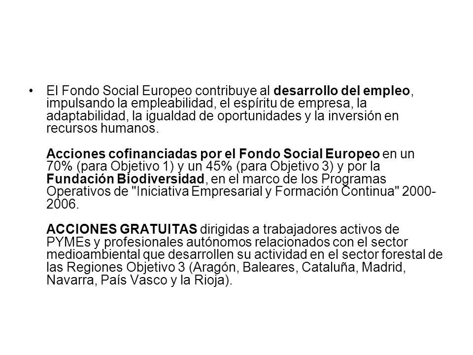 El Fondo Social Europeo contribuye al desarrollo del empleo, impulsando la empleabilidad, el espíritu de empresa, la adaptabilidad, la igualdad de oportunidades y la inversión en recursos humanos.