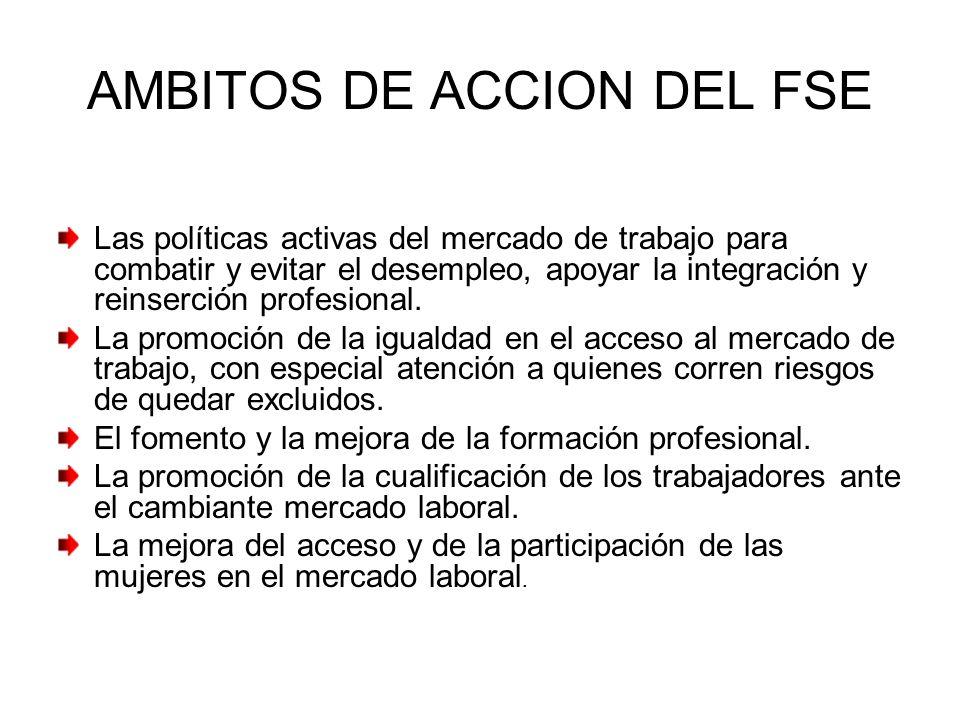 AMBITOS DE ACCION DEL FSE