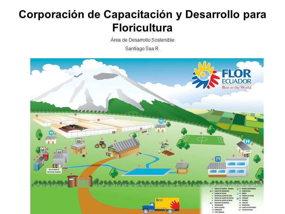 Corporación de Capacitación y Desarrollo para Floricultura