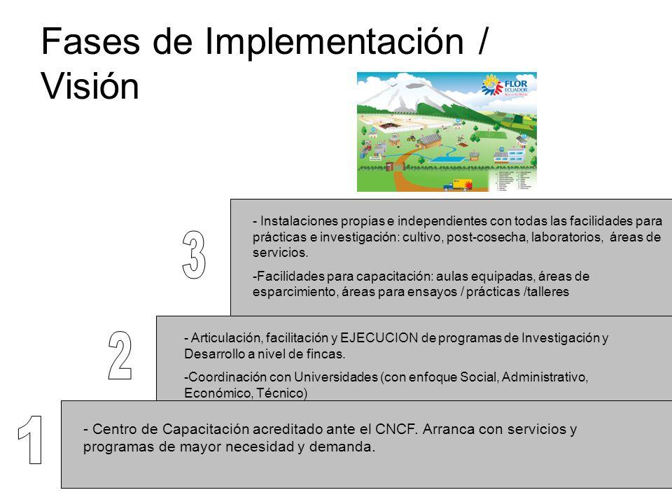 Fases de Implementación / Visión