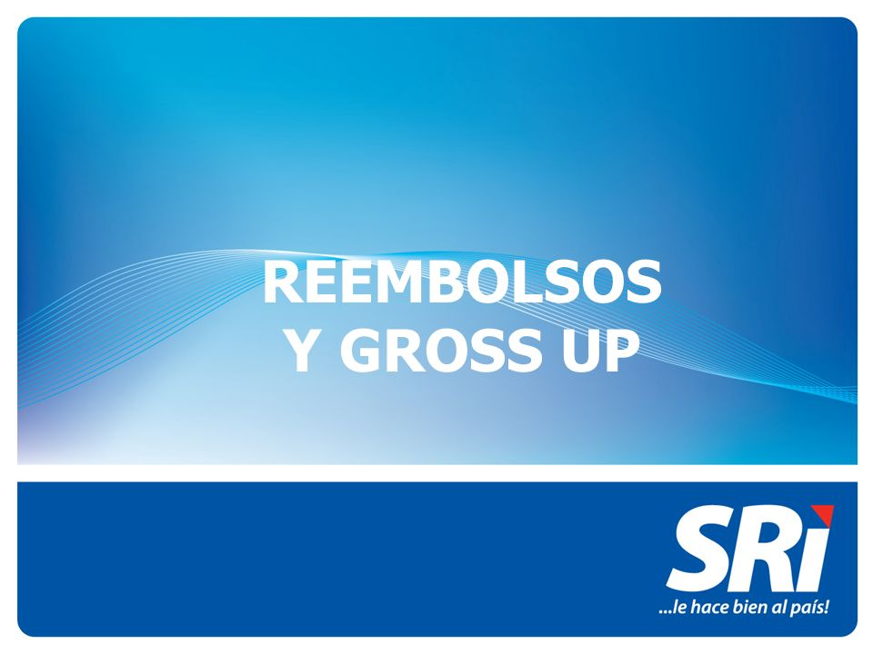 REEMBOLSOS Y GROSS UP 1