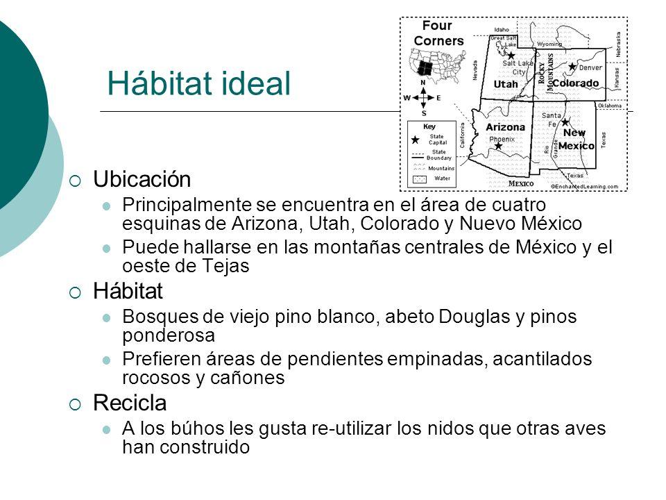 Hábitat ideal Ubicación Hábitat Recicla