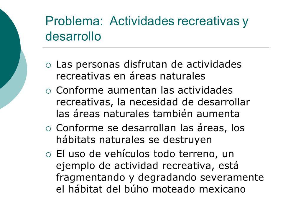 Problema: Actividades recreativas y desarrollo