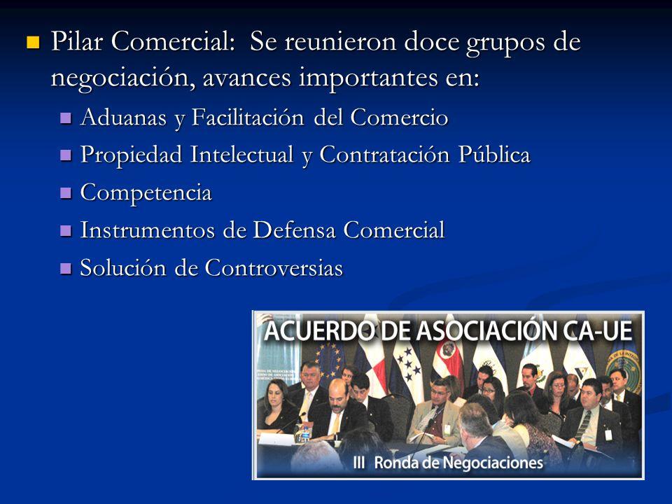 Pilar Comercial: Se reunieron doce grupos de negociación, avances importantes en: