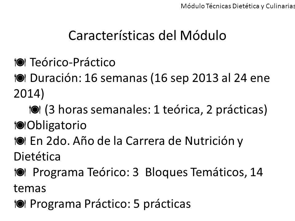 Características del Módulo