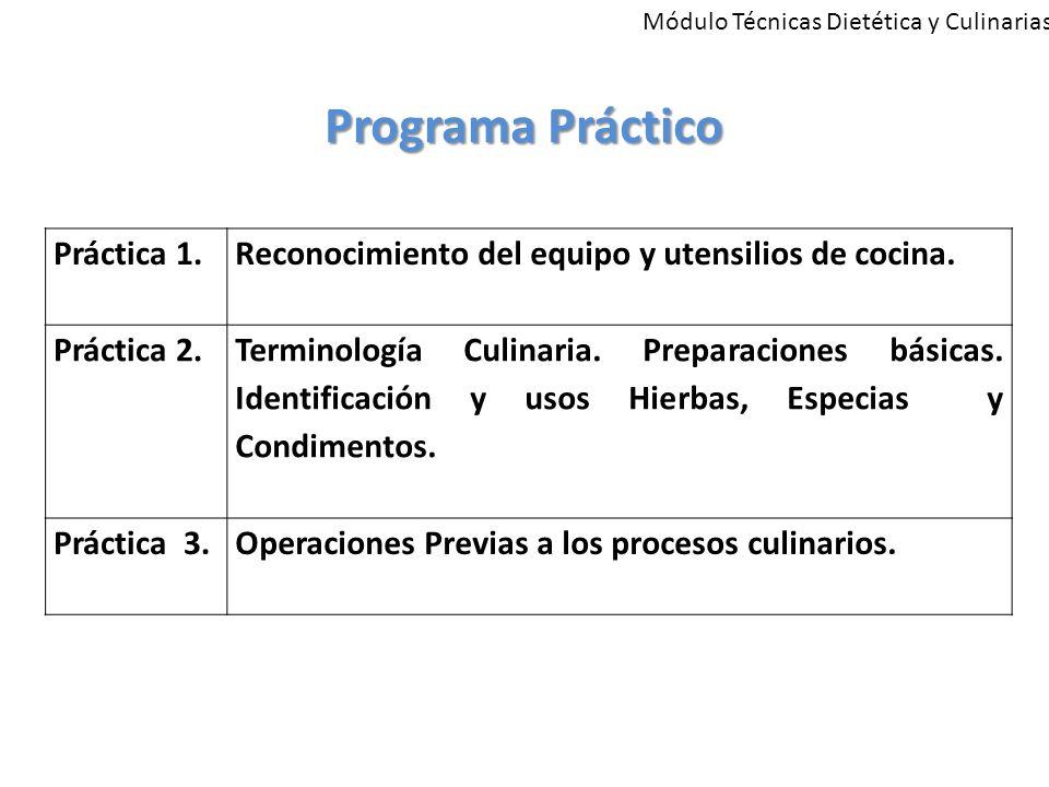 Programa Práctico Práctica 1.