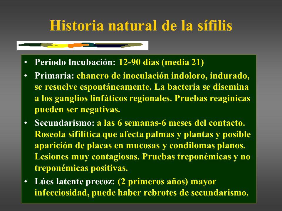 Historia natural de la sífilis