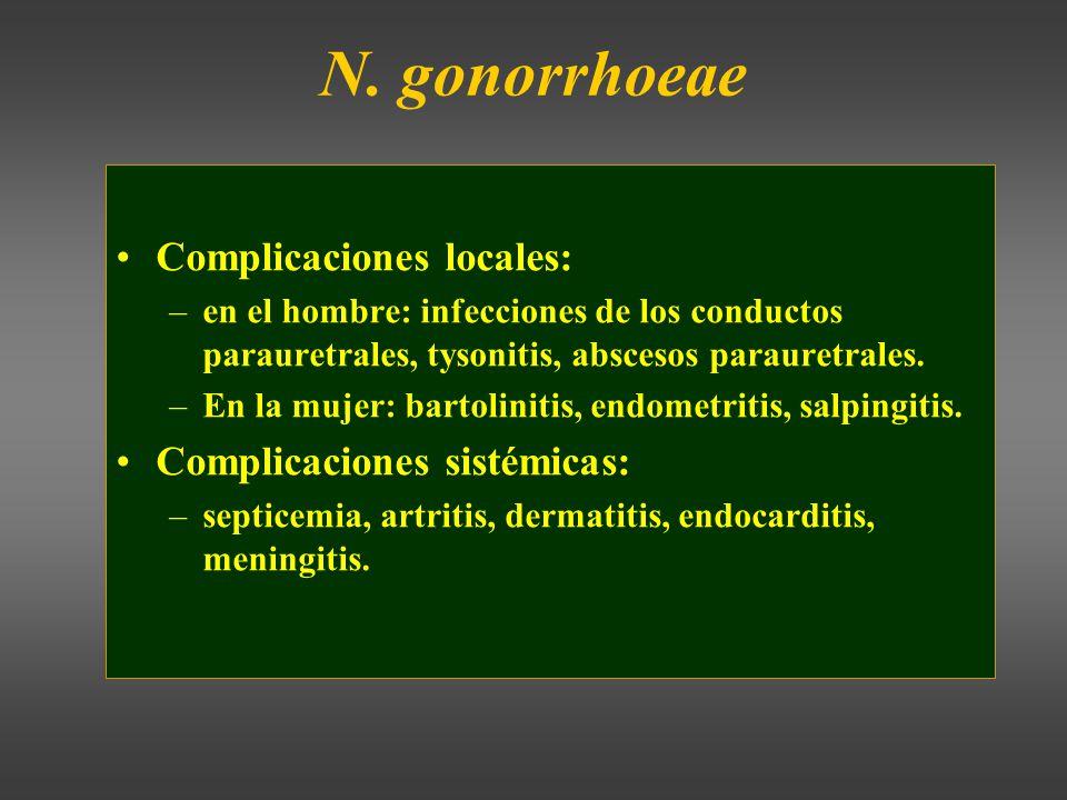 N. gonorrhoeae Complicaciones locales: Complicaciones sistémicas:
