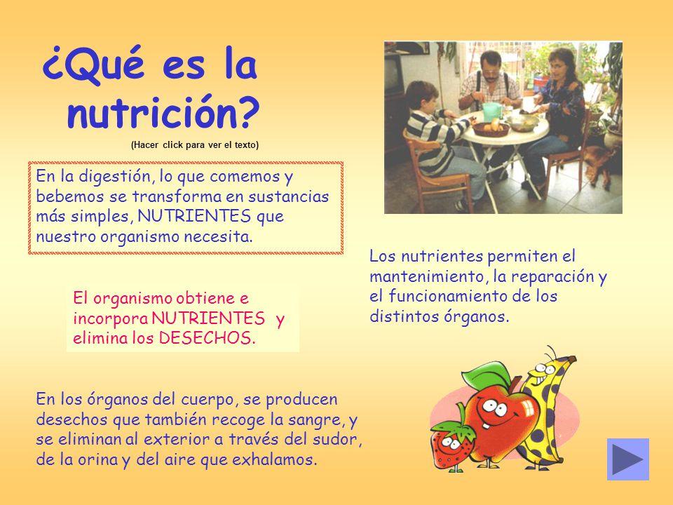 La nutrici n y la salud ppt video online descargar - Alimentos para la circulacion ...