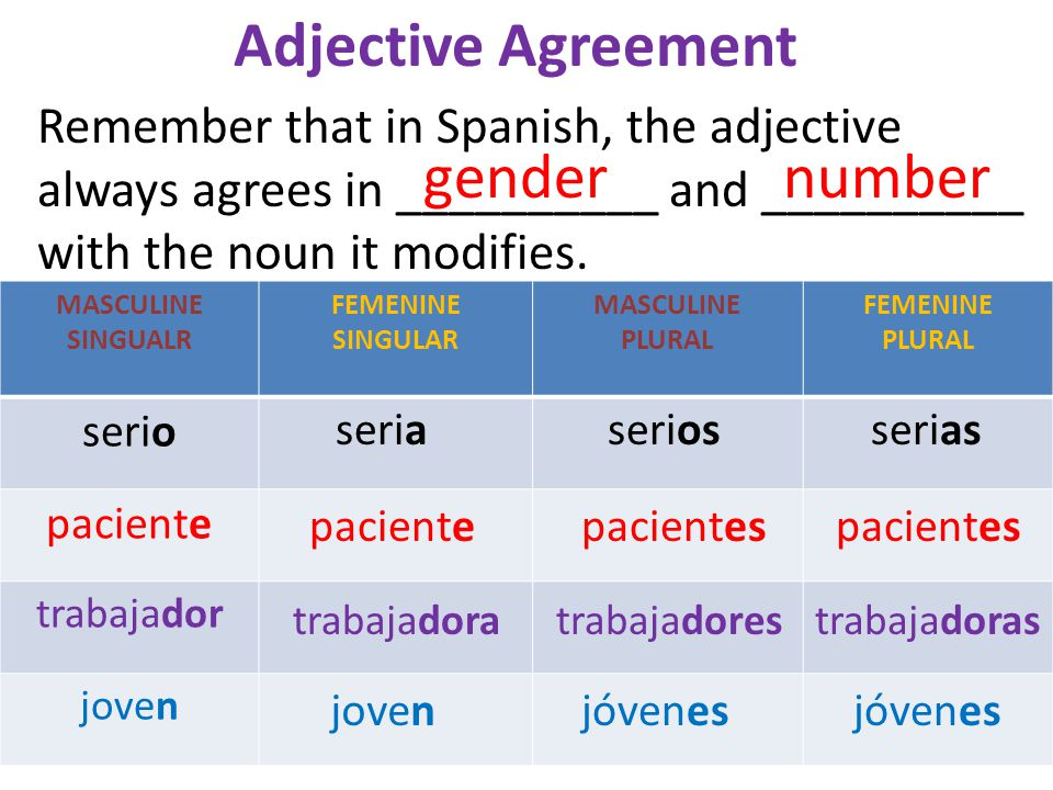 Adjective Agreement Gender Number Remember That In Spanish