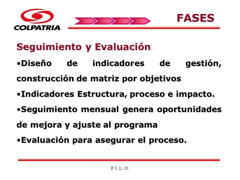 FASES Seguimiento y Evaluación