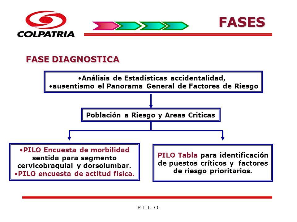 FASES FASE DIAGNOSTICA Análisis de Estadísticas accidentalidad,