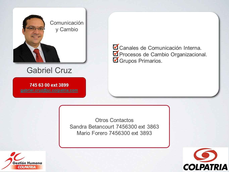 Gabriel Cruz Comunicación y Cambio Canales de Comunicación Interna.