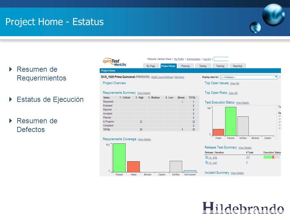 Project Home - Estatus Resumen de Requerimientos Estatus de Ejecución