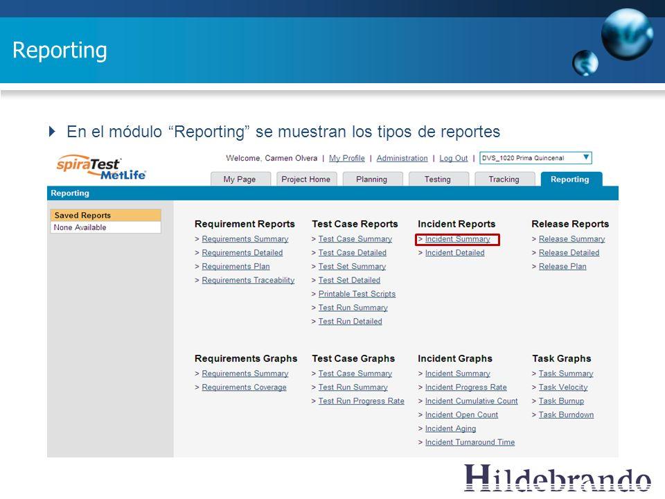 Reporting En el módulo Reporting se muestran los tipos de reportes