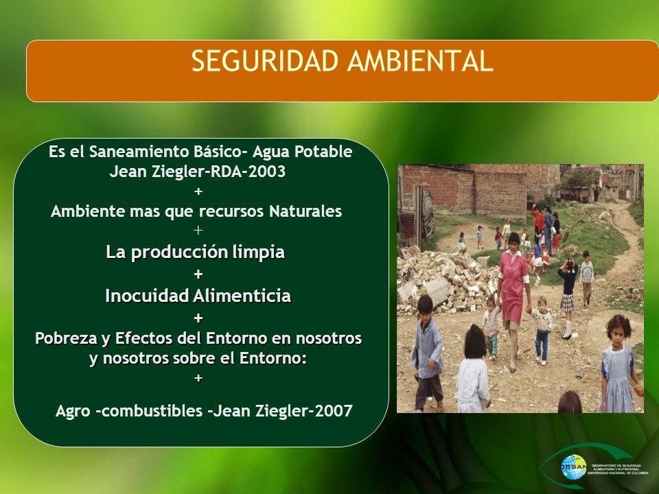 SEGURIDAD AMBIENTAL La producción limpia Inocuidad Alimenticia