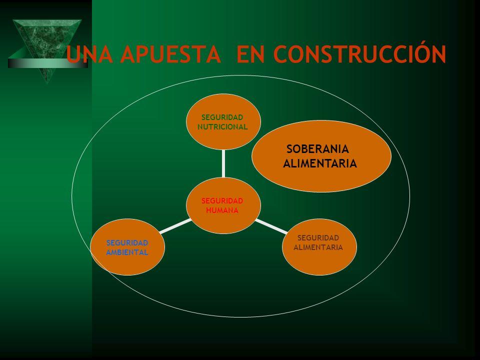 UNA APUESTA EN CONSTRUCCIÓN