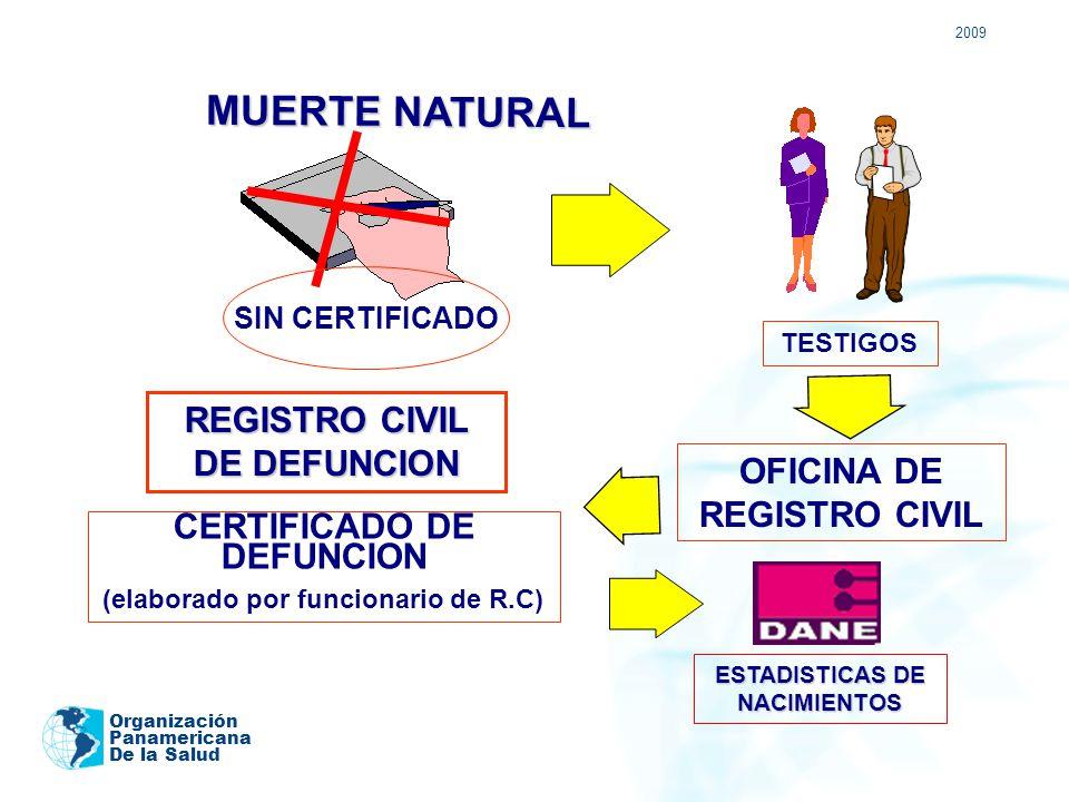 Sistema de registro civil y estad sticas vitales ppt for Oficina registro