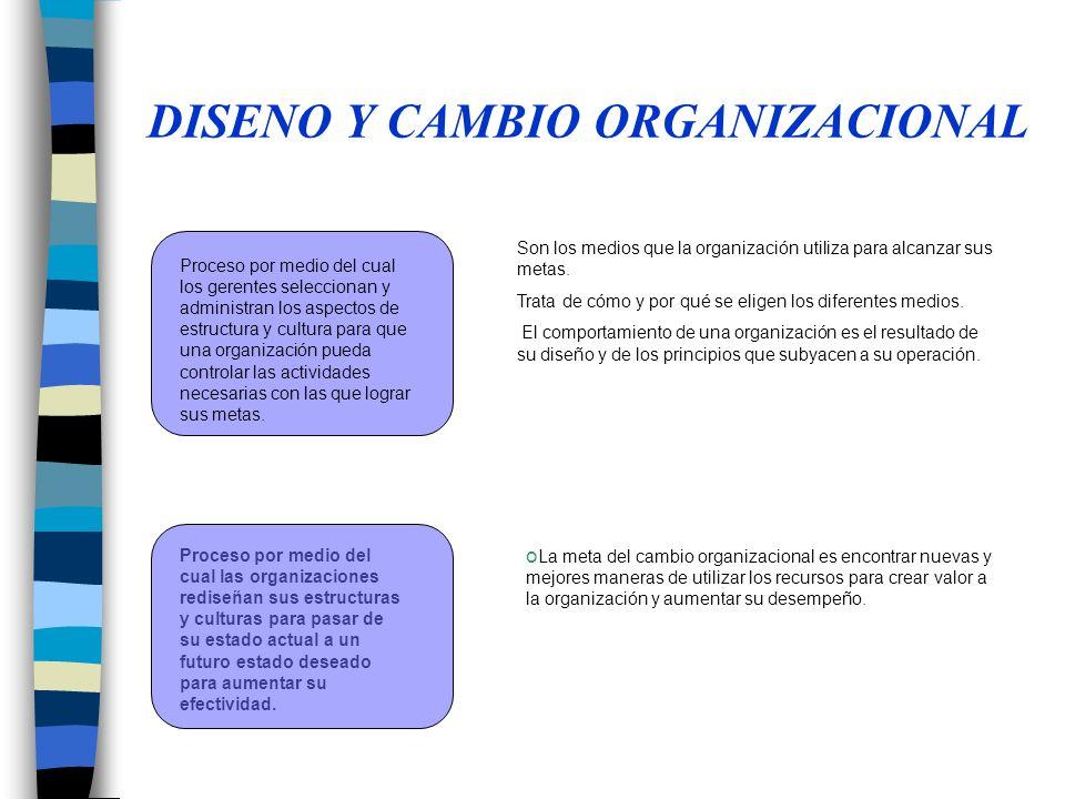 DISENO Y CAMBIO ORGANIZACIONAL