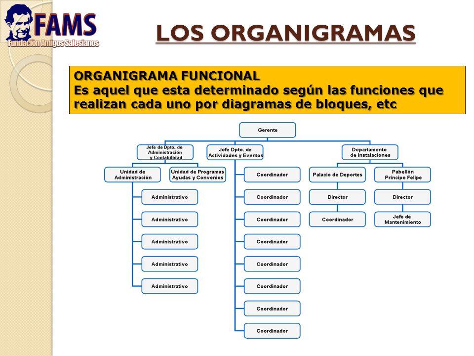 LOS ORGANIGRAMAS ORGANIGRAMA FUNCIONAL