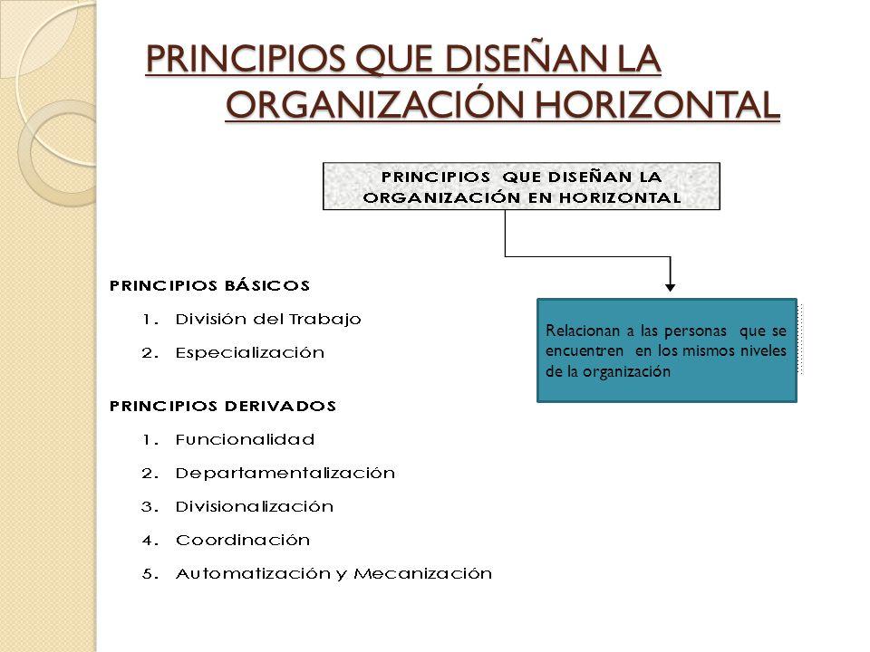 PRINCIPIOS QUE DISEÑAN LA ORGANIZACIÓN HORIZONTAL
