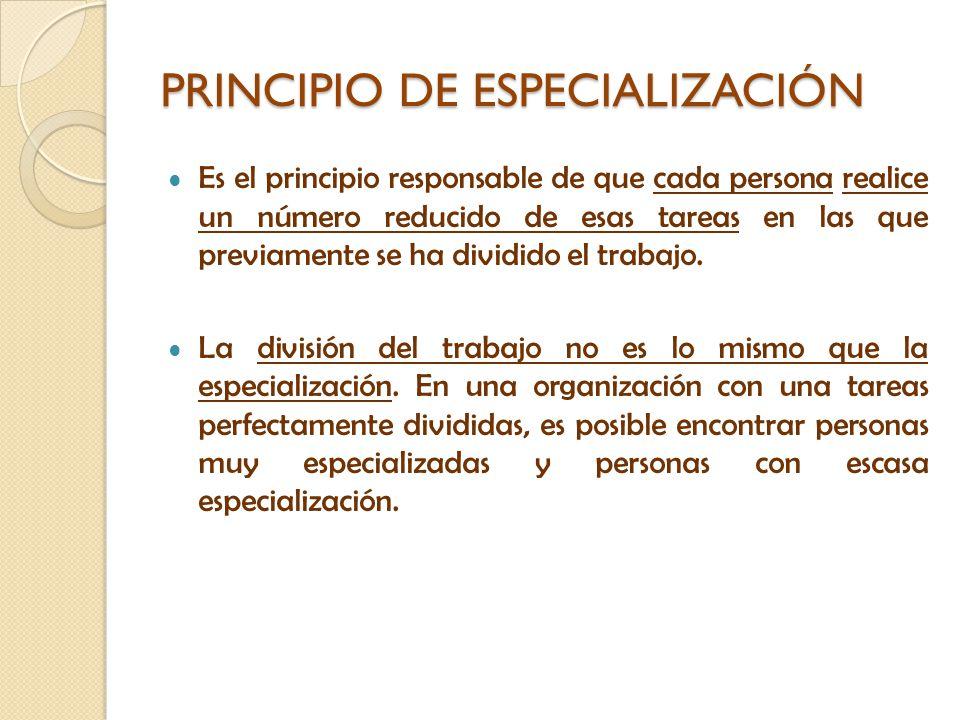PRINCIPIO DE ESPECIALIZACIÓN