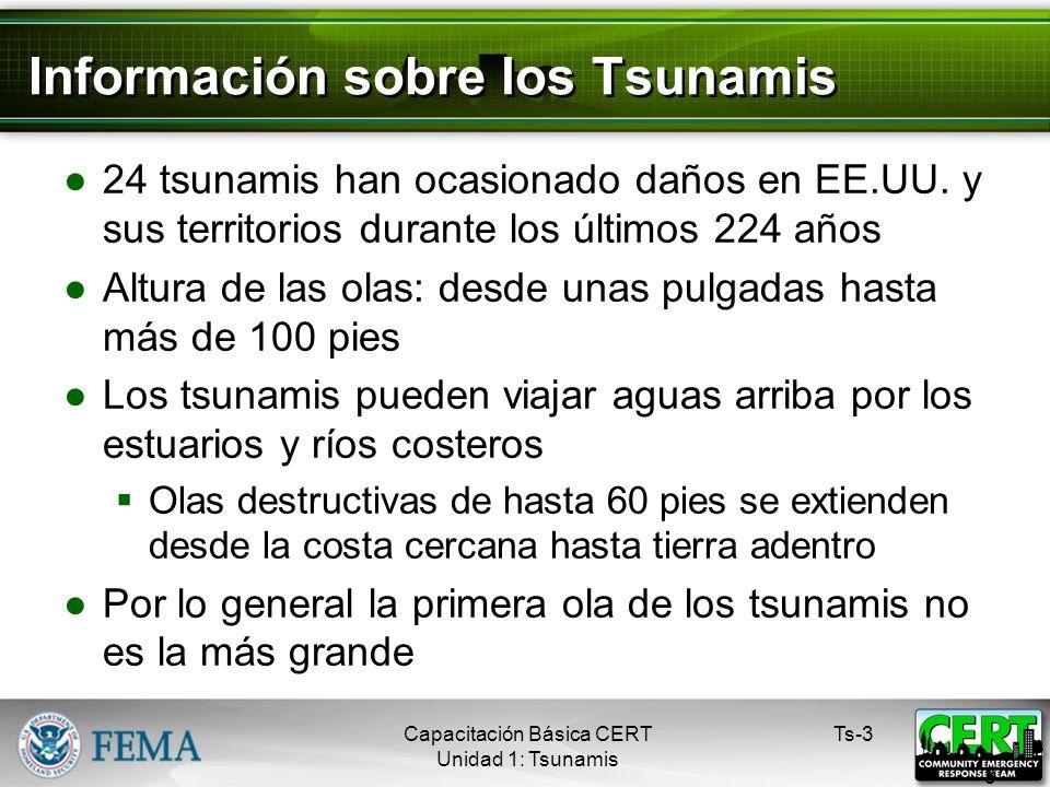 Información sobre los Tsunamis