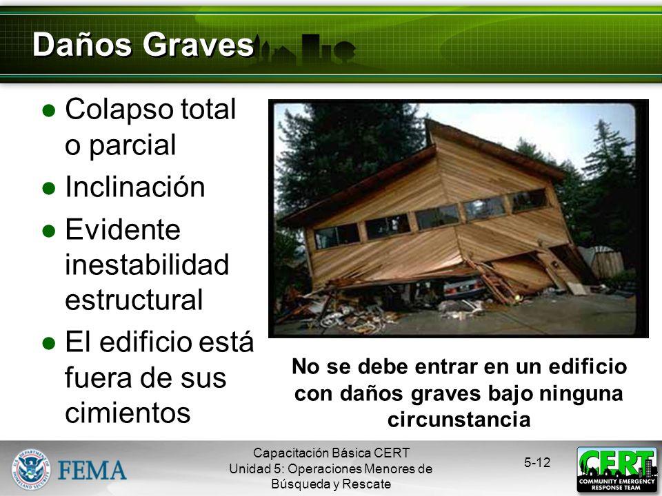 Daños Graves Colapso total o parcial Inclinación