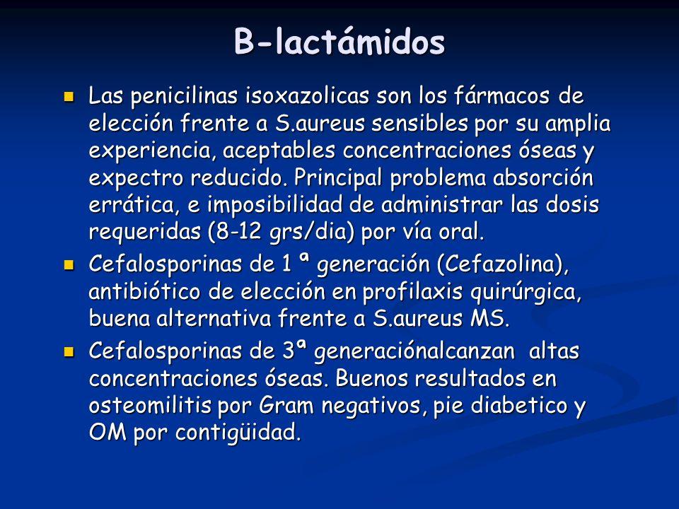 B-lactámidos