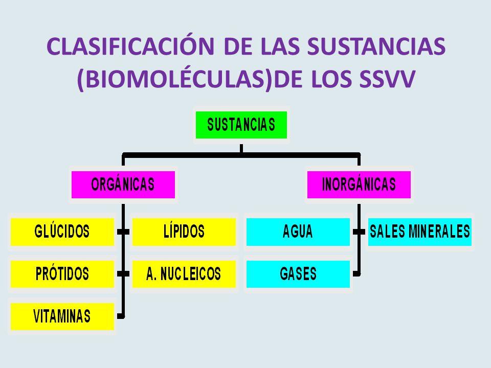 CLASIFICACIÓN DE LAS SUSTANCIAS (BIOMOLÉCULAS)DE LOS SSVV