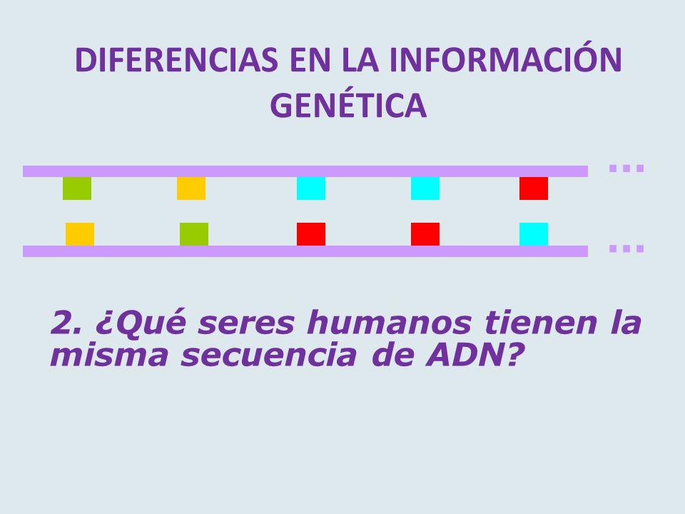 DIFERENCIAS EN LA INFORMACIÓN GENÉTICA