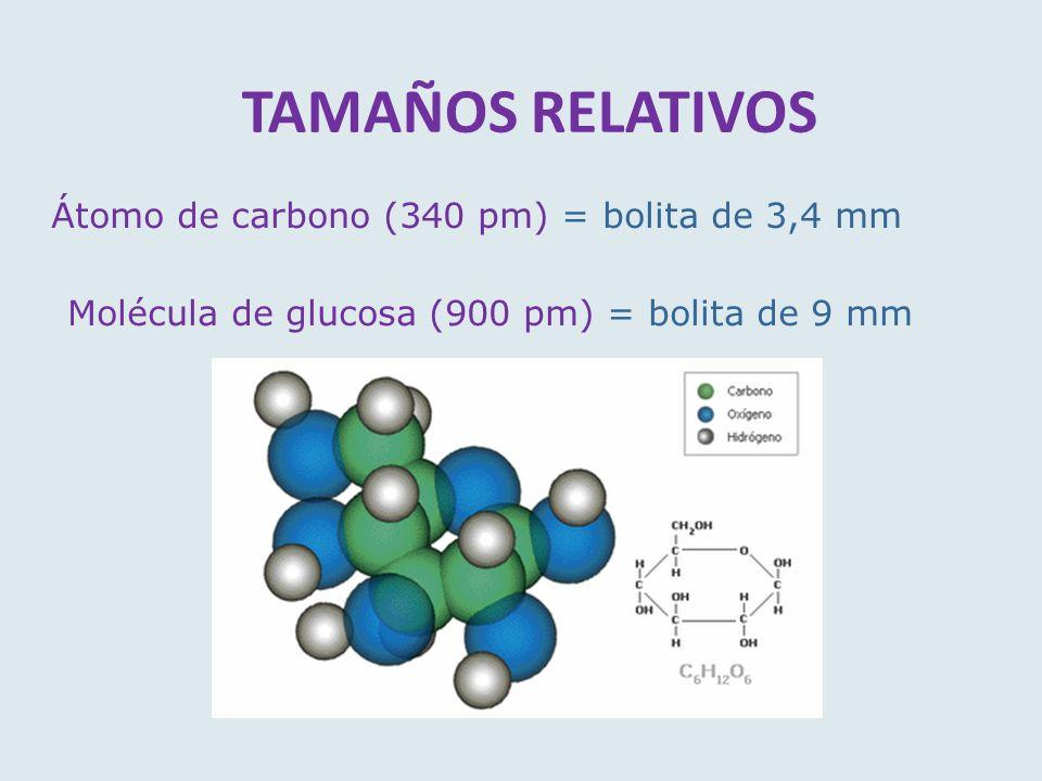 TAMAÑOS RELATIVOS Átomo de carbono (340 pm) = bolita de 3,4 mm