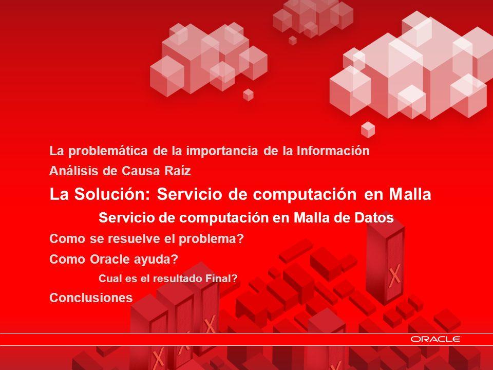 La Solución: Servicio de computación en Malla