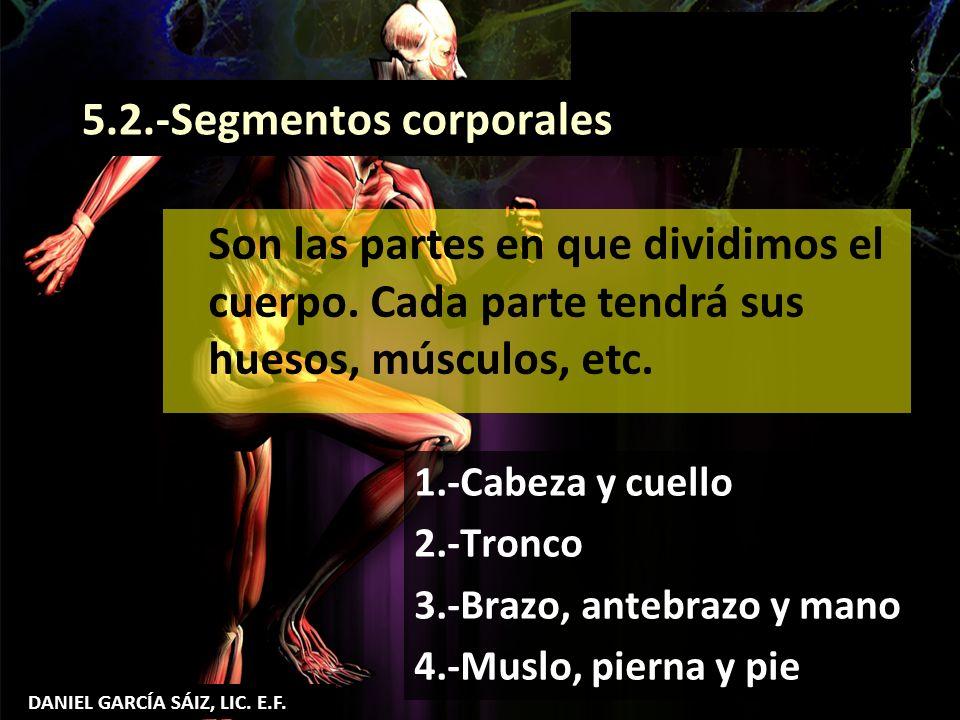 5.2.-Segmentos corporales