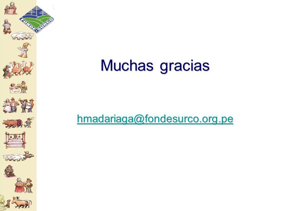 Muchas gracias hmadariaga@fondesurco.org.pe