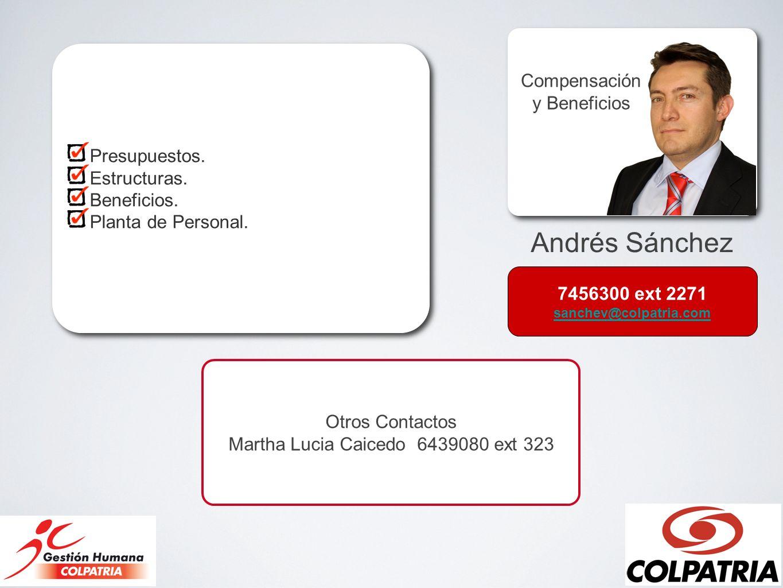 Andrés Sánchez Compensación y Beneficios Presupuestos. Estructuras.