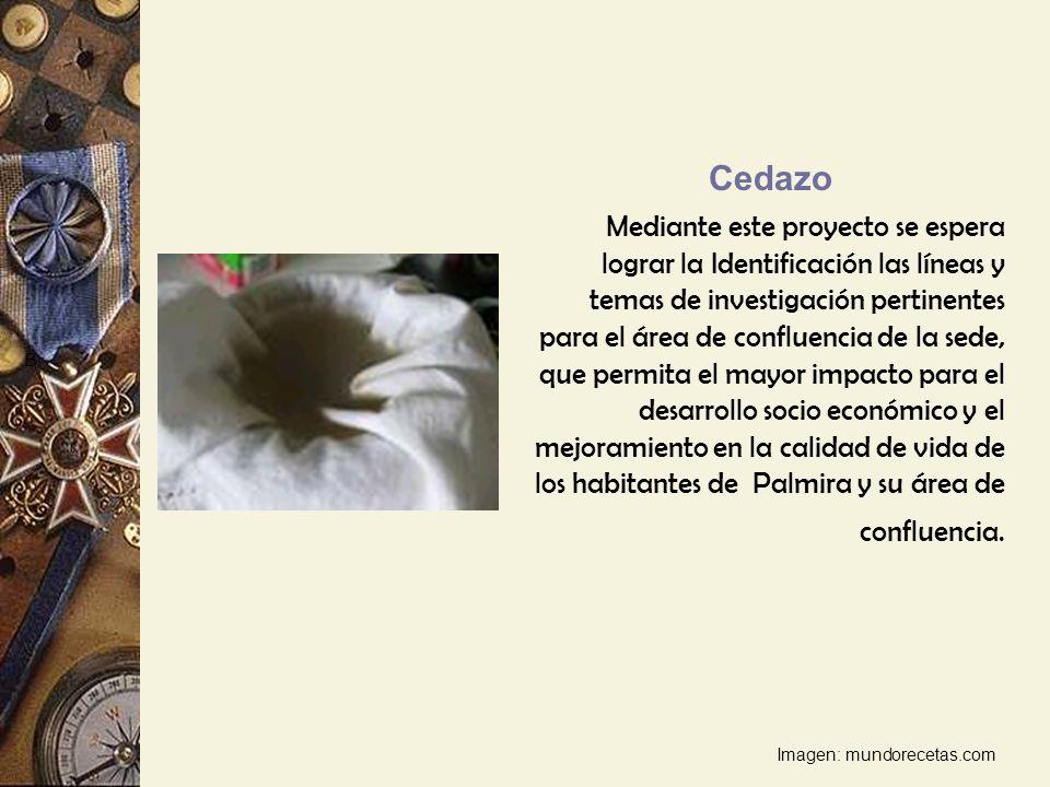 Cedazo