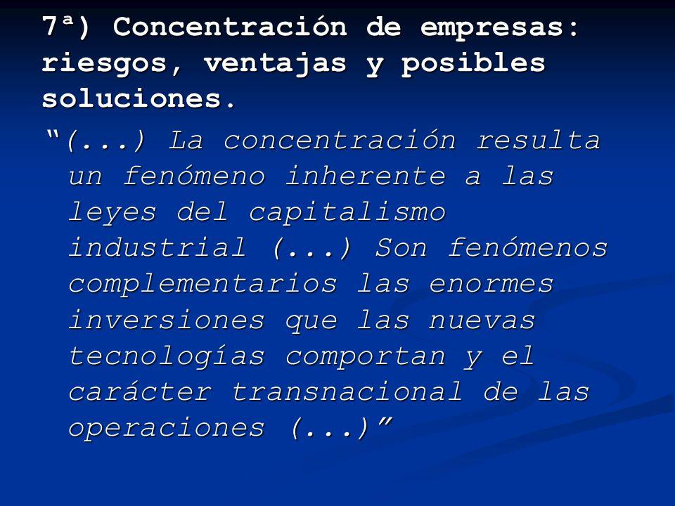 7ª) Concentración de empresas: riesgos, ventajas y posibles soluciones.