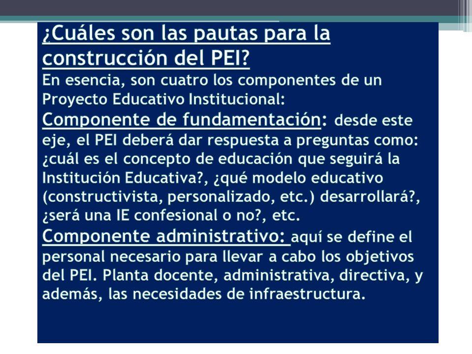 ¿Cuáles son las pautas para la construcción del PEI