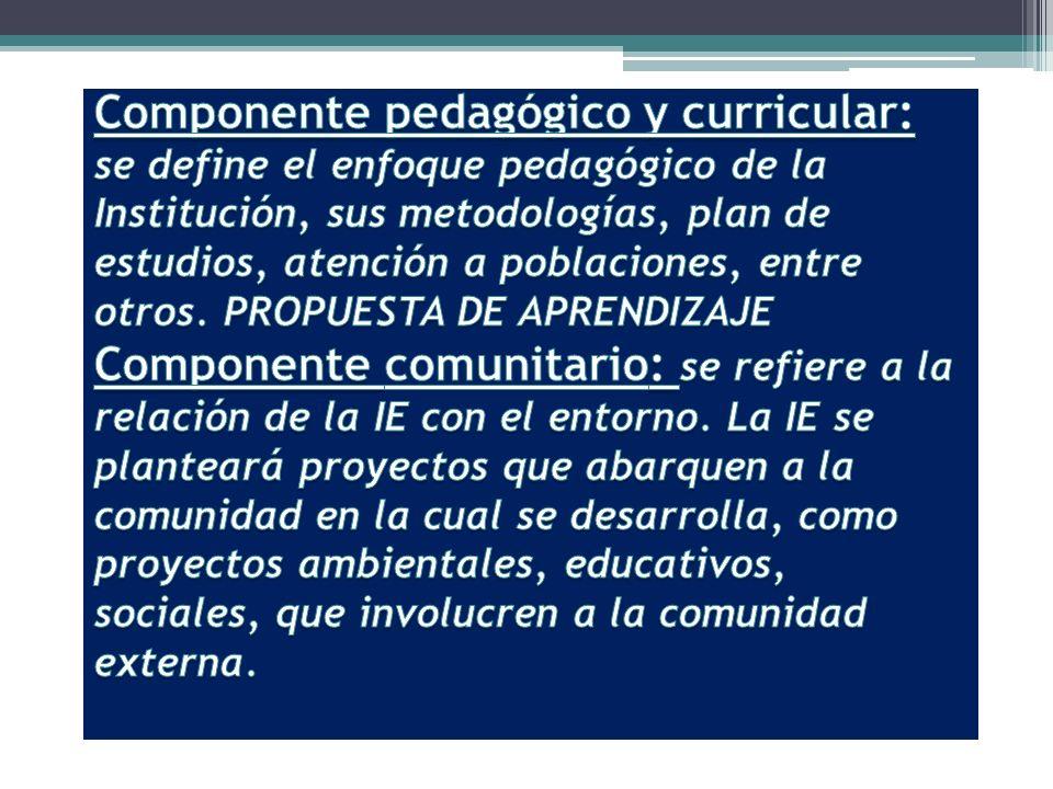 Componente pedagógico y curricular: se define el enfoque pedagógico de la Institución, sus metodologías, plan de estudios, atención a poblaciones, entre otros.