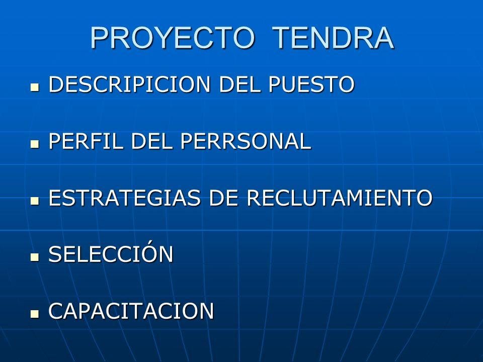 PROYECTO TENDRA DESCRIPICION DEL PUESTO PERFIL DEL PERRSONAL