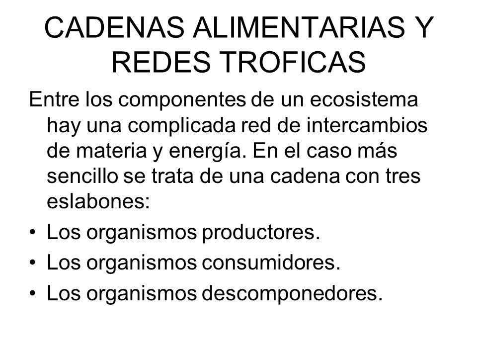 CADENAS ALIMENTARIAS Y REDES TROFICAS