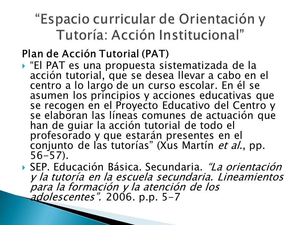 Espacio curricular de Orientación y Tutoría: Acción Institucional