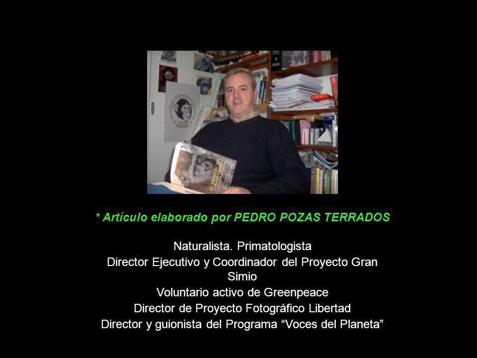 * Artículo elaborado por PEDRO POZAS TERRADOS
