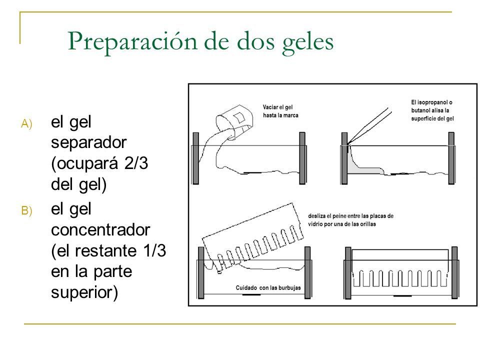 Preparación de dos geles