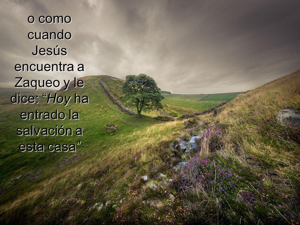 o como cuando Jesús encuentra a Zaqueo y le dice: Hoy ha entrado la salvación a esta casa